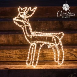 Christmas Reindeer (216 LED)