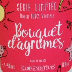 Bougie - Bouquet Agrumes