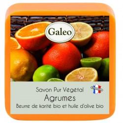 jabón con frutas cítricas