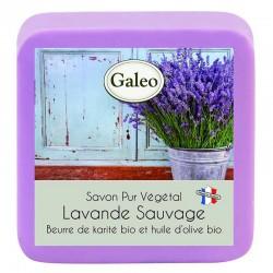 Wilde Lavendelseife