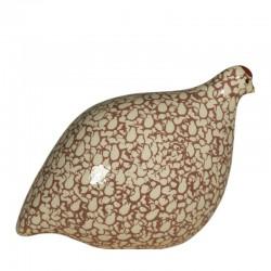 Red quail