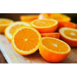 Marmelade von Orangen
