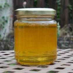 Miel de acacia - delicatessen francés online